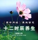 中华宝藏《黄帝内经》的智慧:因天之序,十二时养生智慧