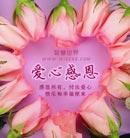 当我们用心去感恩所有,学会付出爱心,快乐和幸福就会到来
