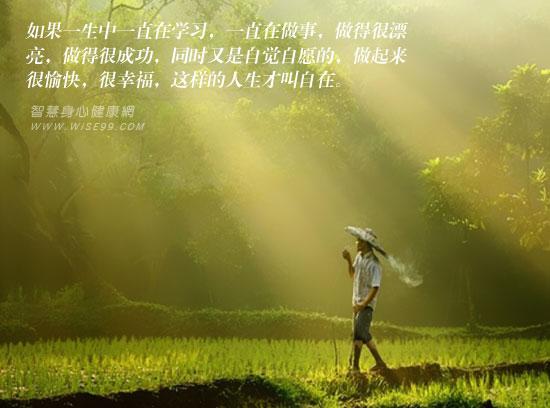 生命自在,自在生活,如何使自己的人生自在?