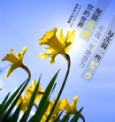 水仙花园启示:每天走一步,你可以改变自己的世界