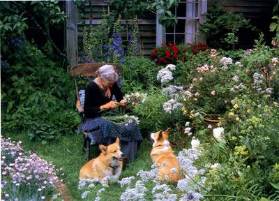 塔莎・杜朵,美国著名生活艺术家、绘本作家