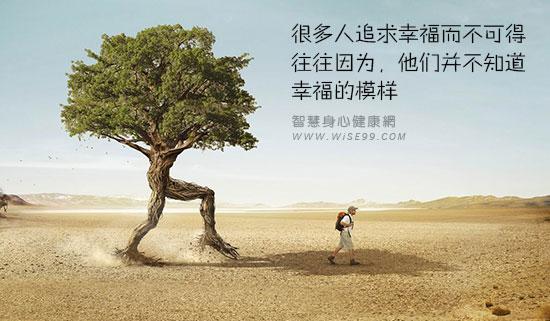 很多人追求幸福而不可得,往往因为,他们并不知道幸福的模样
