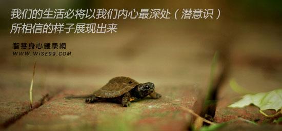 我们的生活必将以我们内心最深处(潜意识)所相信的样子展现出来