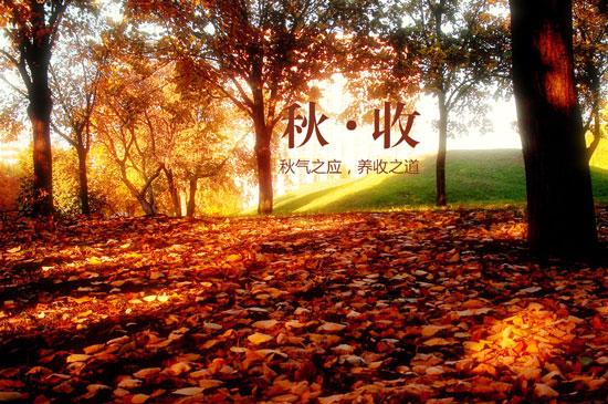 秋季,秋气之应,养收之道