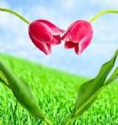 八十六字爱情幸福约定
