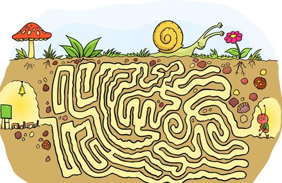 生命是一个迷宫
