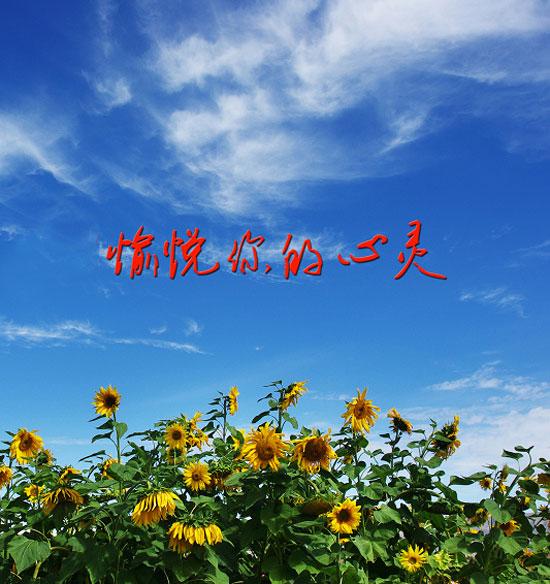 七月十八日觉醒:学会愉悦你的心灵,你才能更加热爱生活