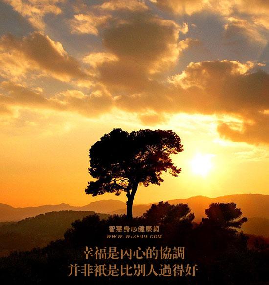 十一月五日觉醒:幸福是内心的协调,并非只是比别人过得好