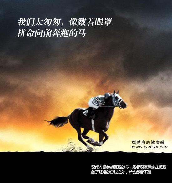现代人像参加赛跑的马,戴着眼罩拼命往前跑,除了终点的白线之外,什么都看不见